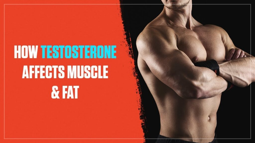 Why Nobody's Talking About Ideal Time To Require Testosterone Booster Pill