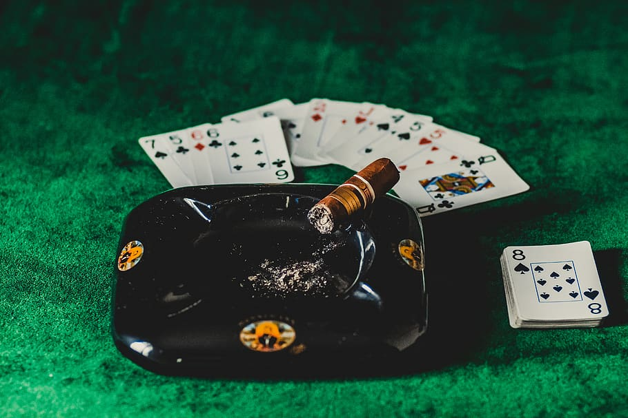 Rapid Monitor Your Online Casino