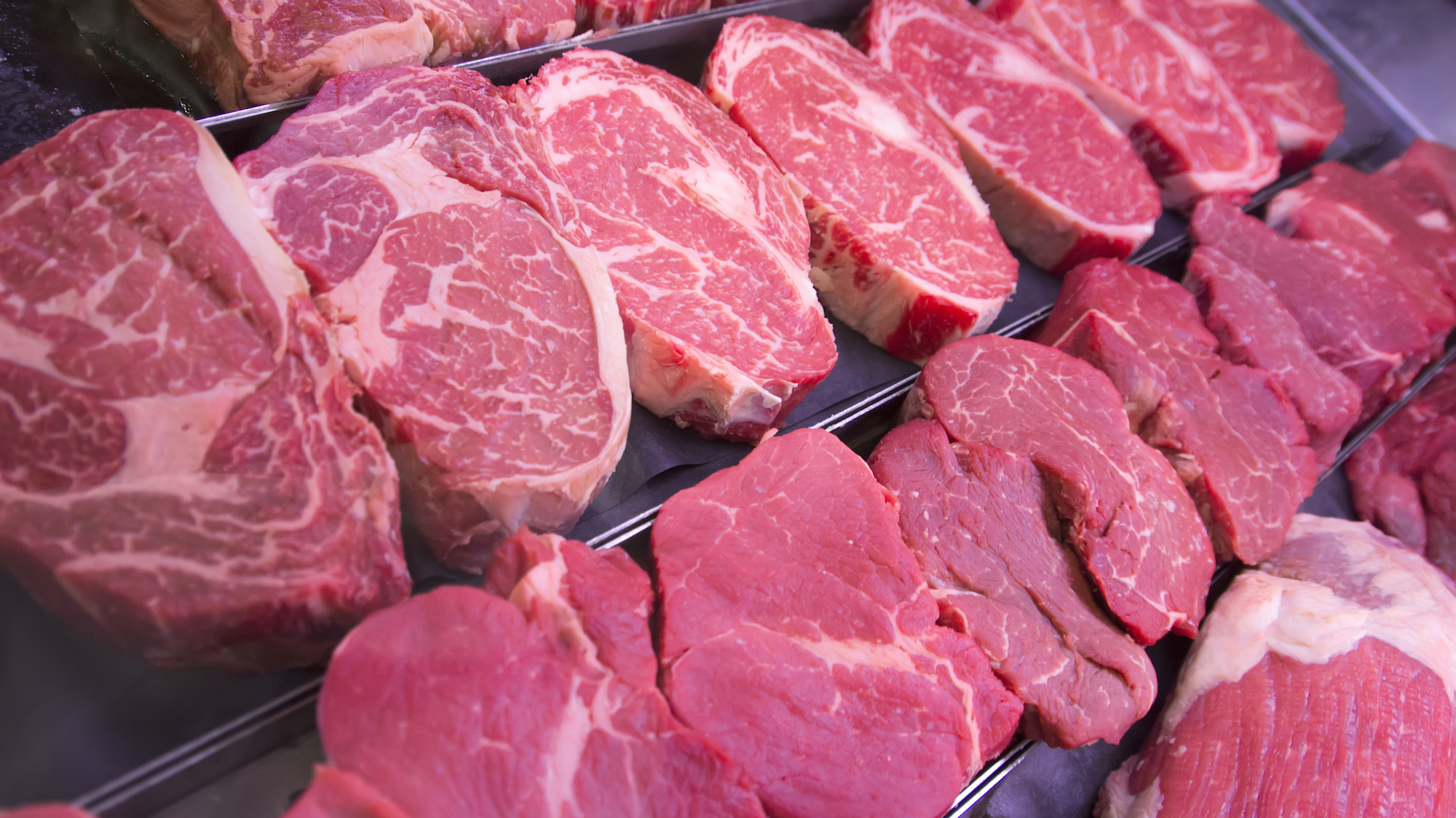 How Bovine Bone Made Me A Better Salesperson Than You